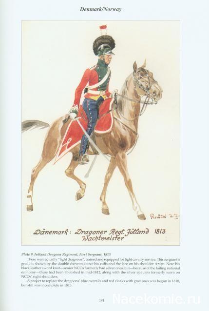 Danemark Light Dragon regiment first sergeant 1813