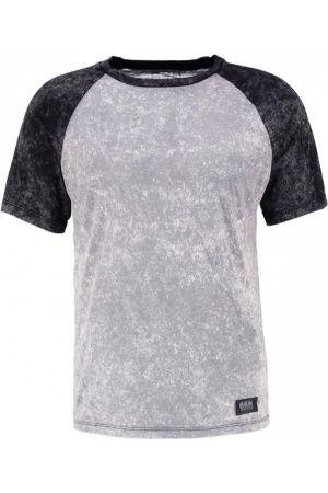 Hombre Camisetas - RAGLAN Camiseta print light grey/dark grey                                                                                                                                                                                 Más