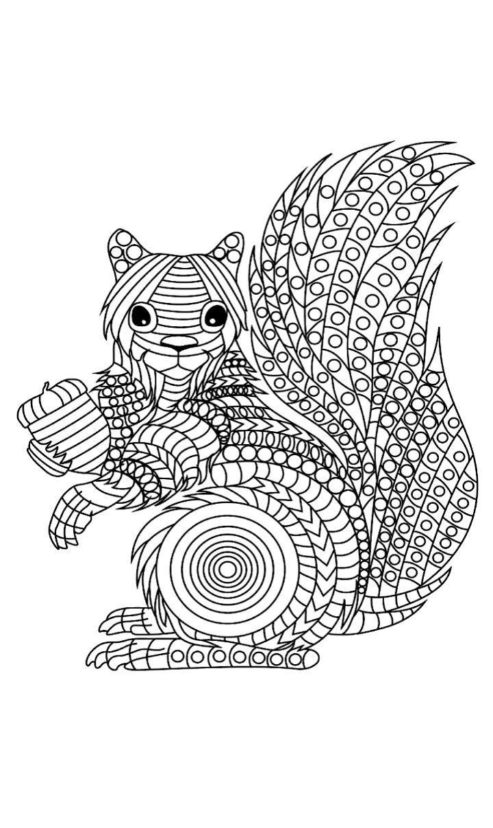 215 best coloring rodent images on pinterest colouring