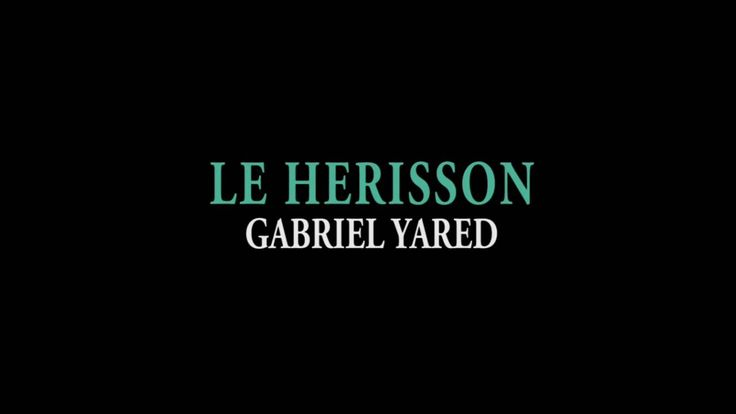 French Movie Le Herisson The Hedgehog by Josiane Balasko A  beautifully realised adaption about perceptions relationships and the mystery of life