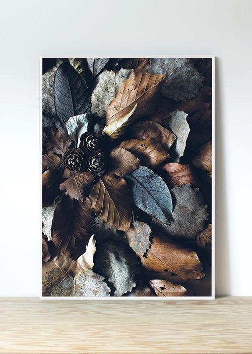 FREYWOOD - Løvfall Plakat/poster (50 x 70 cm)
