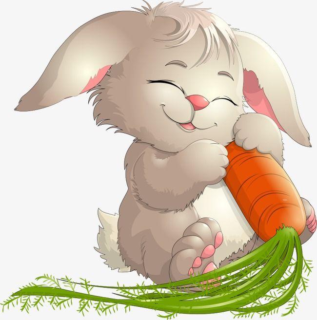 Conejo,Conejitos,Animales de dibujos animados,Vector de animales,Vector conejo,Conejo de dibujos animados,Zanahoria