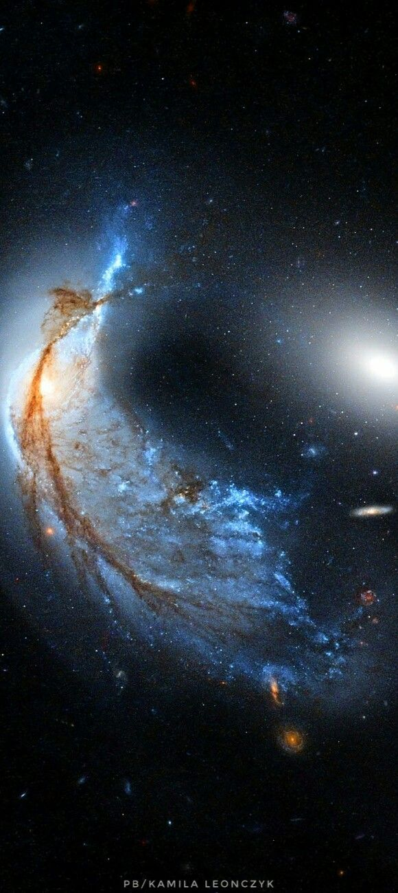 The Porpoise Galaxy from Hubble Image Credit: NASA, ESA, Hubble, HLA;