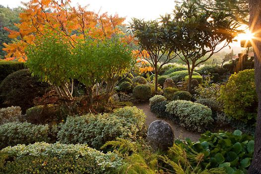 1000 images about nicole de vesian gardens on pinterest for Garden and its importance