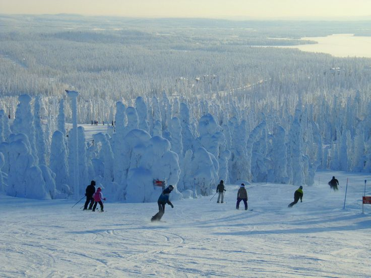 No one does any interesting sports in Finland. | 38 Reasons You Should Never Visit Finland