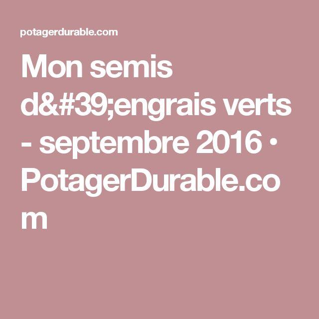 Mon semis d'engrais verts - septembre 2016 • PotagerDurable.com