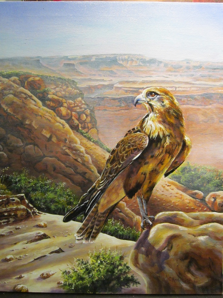 Falcon on the Rocks Copyright 2011  Painted for River's Edge School