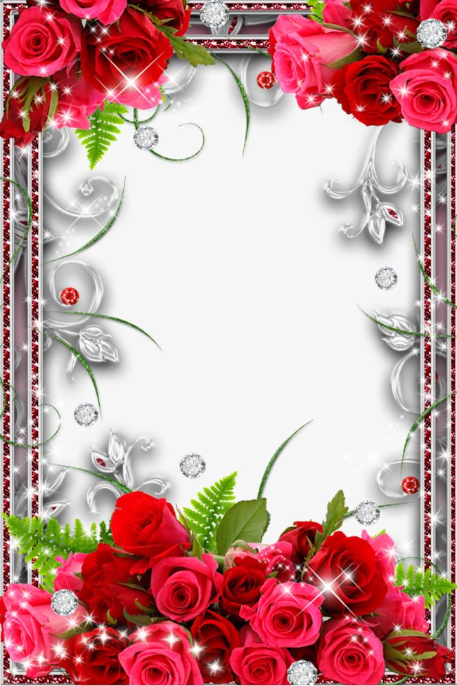 Rose Border Stock Photos Flower frame, Picture borders