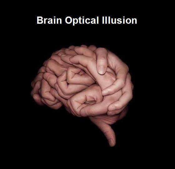 optical illusions human body illusion eye brain tricks test