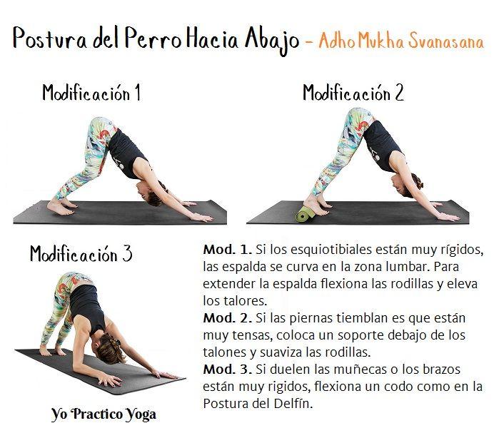 La Postura Del Perro Hacia Abajo Tiene Muchas Modificaciones Y Variantes Que Permiten Adecuar La Postura A La Yoga Ashtanga Posturas De Yoga Ejercicios De Yoga