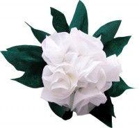 Come fare un bouquet di rose bianche per la mamma