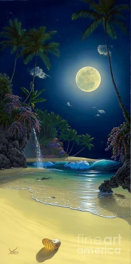 Maravilhas entre o Céu e a Terra!!!