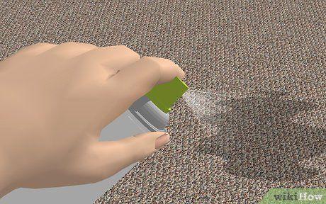 3 formas de eliminar el olor de orina de perro de las alfombras