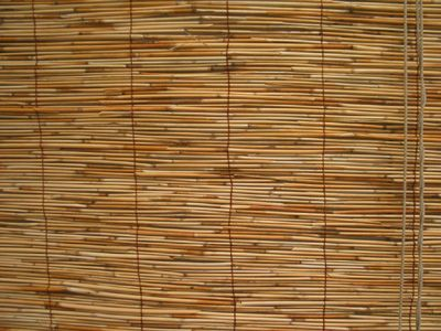 SUPER CHEAP WINDOW COVERING OPTION: Reed style Bamboo roll ...