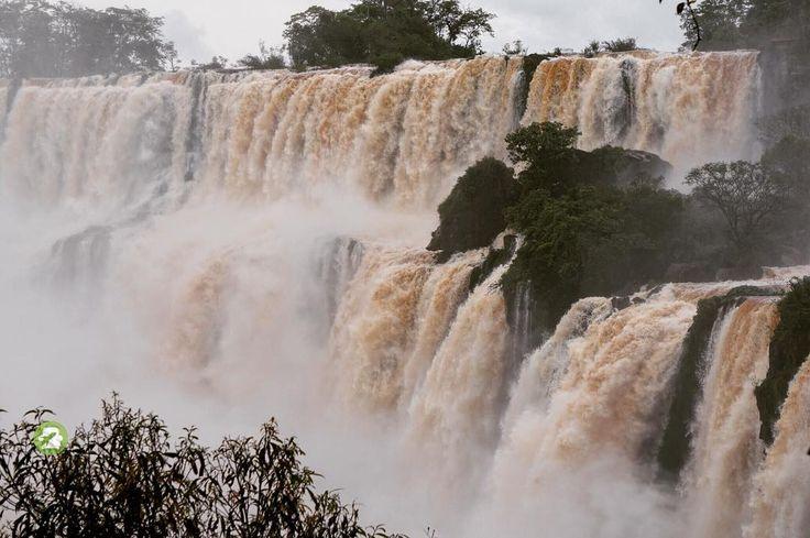 New7Wonders of Nature Iguazu Falls Argentinian Side (credit @PlanLazy) #justPlanLazy  #waterfalls #falls #cataract #misiones #argentina #iguazú #iguazu #southamerica #iguassufalls #iguazufallsargentina #spectacular #mighty #water #river #nationalpark #powerofnature #beautiful #nature #travel #new7wondersofnature  #naturaleza #parquenacional #rio #cataratas #cataratasdeliguazu #cataratasarg #parquenacionaldoiguaçu #patrimonionaturaldahumanidade #cataratasdoiguaçu by planlazy