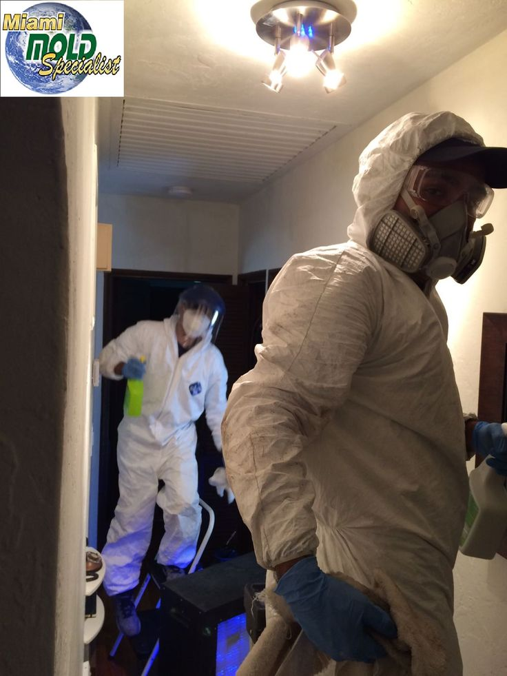 our #team has been ensuring you have a healthy and #safe place to spend time in. #toxicmold #home #IAQ #health #healthyhouse