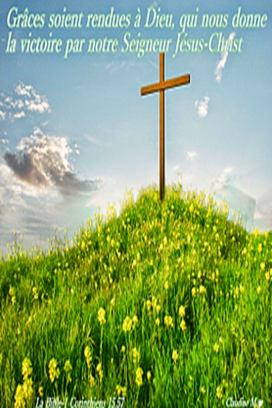 Les 445 meilleures images du tableau bonjour sur pinterest - Verset biblique consolation ...