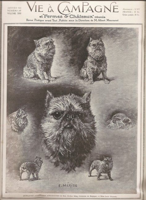 January 1924  Vie a la Campagne magazine withBrussels Griffon cover.  E. Merite  A practical review of everything public; under the direction of M. Albert Maumene.
