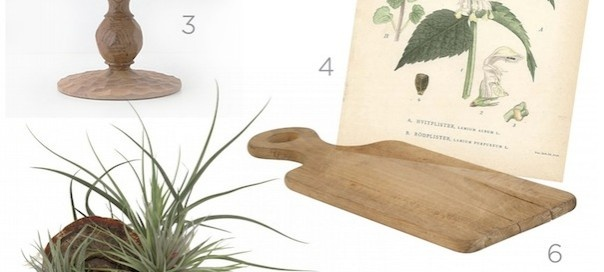 Hostess with the Mostess: Natural Chic: Natural Chic, Display Airplant