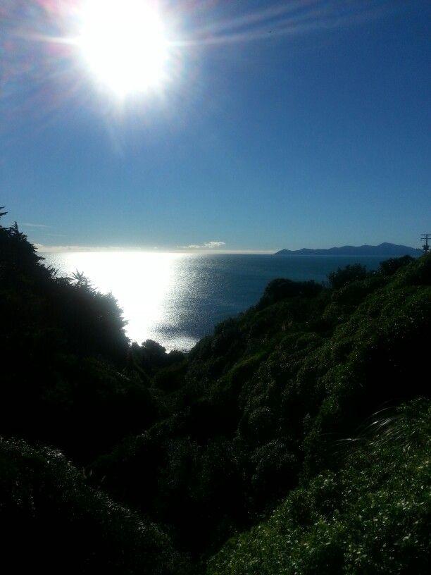Walking to Pukerua Bay beach