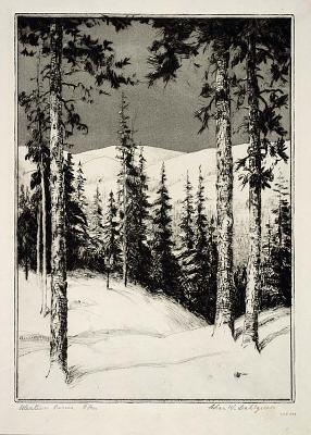 'Western Pines', by Charles W Dahlgreen.  1864-1955     Drypoint & aquatint Love the simplicity .