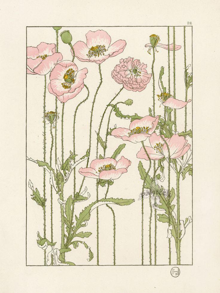 "The Pink Poppy - Jeannie Foord - ""Decorative Flower Studies"", Pochoir Prints, 1901."
