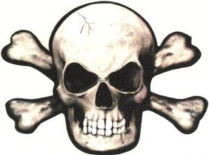 the not so jolly roger essay This is a thorough set of class discussion and homework questions for the not so jolly roger by jon scieszka the class questions can be used for the whole class or for reading groups.