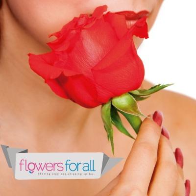 Beautiful roses, quality guaranteed!  flowersforall.com
