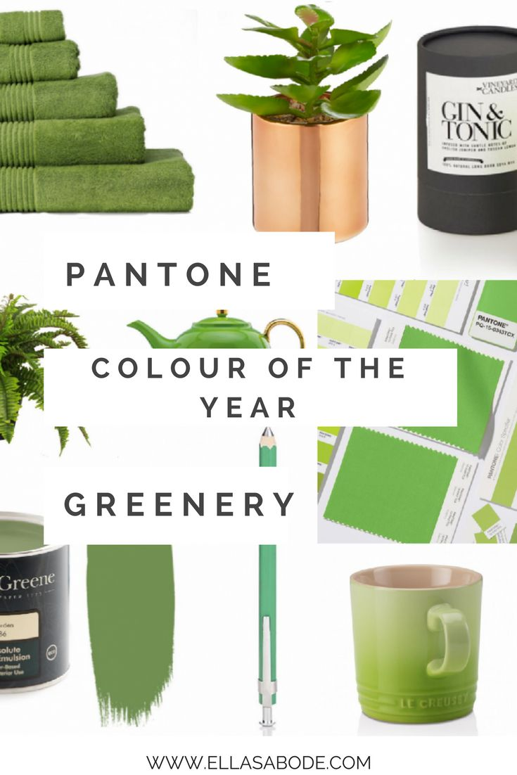 Pantone Colour of the Year - Greenery. Pantone Color of the Year 2017.