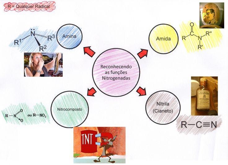 funcoes nitrogenadas
