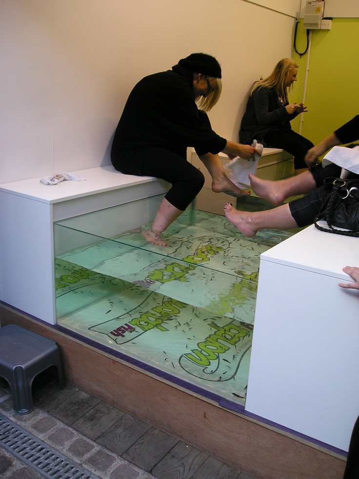 A fish pedicure in camden travel spots pinterest for Fish eating dead skin pedicure