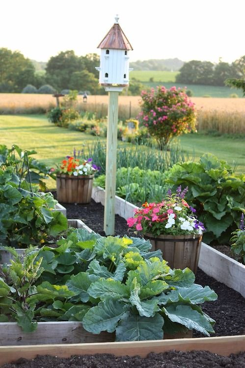 Edible Landscaping: raised bed vegetable garden | jardin potager | bauerngarten | köksträdgård