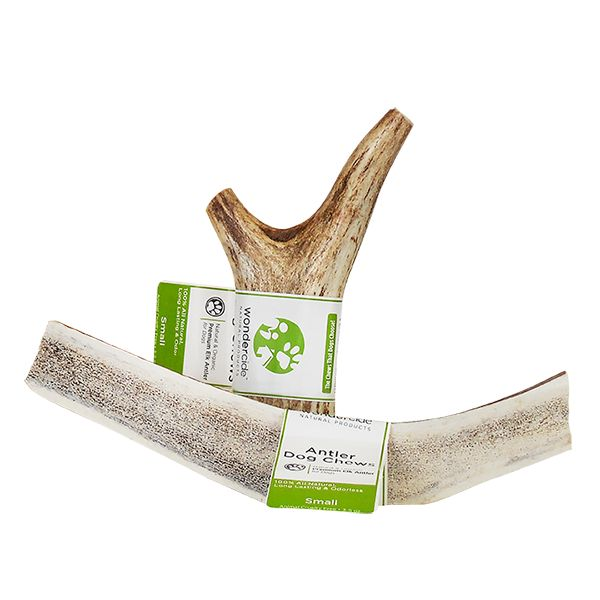 Wondercide Elk Antlers for dogs to chew on. Chemical free, AND they don't chip or splinter so safer for your dogs.