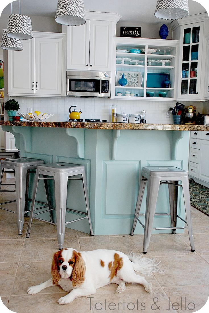 I just realized there's a really cute kitchen behind the Cavalier King Charles spaniel in this pic!