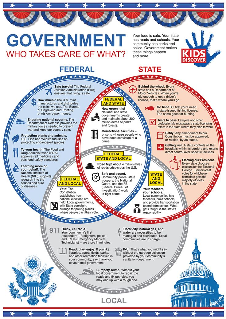 This infograpic highlights the 3 main branches of the U.S. Government for kids in a simple, easy-to-read format.