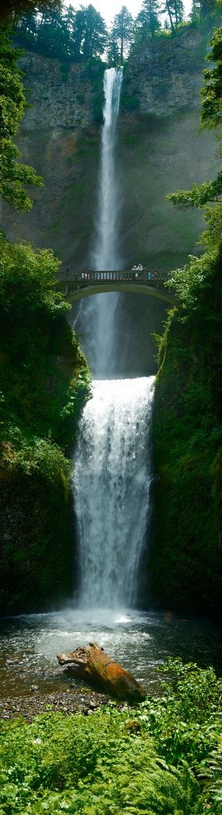 **Multnomah Falls, Oregon, USA. One of the most beautiful places I've been to!