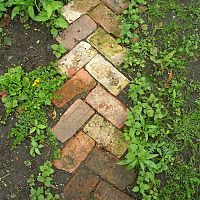 I love this rustic little pathway made from recycled bricks.