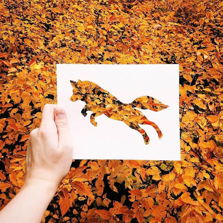 Des silhouettes d'animaux découpées dans une simple feuille de papier, puis superposées dans la nature, une jolie série réalisée par l'artisteNikolai To
