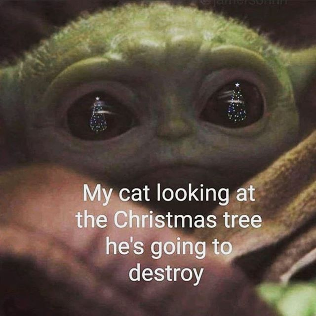 Turn On Post Notification And Follow Official Disneydave For Your Daily Disneymagic Tag Your Friends Yoda Meme Funny Cat Memes Christmas Memes
