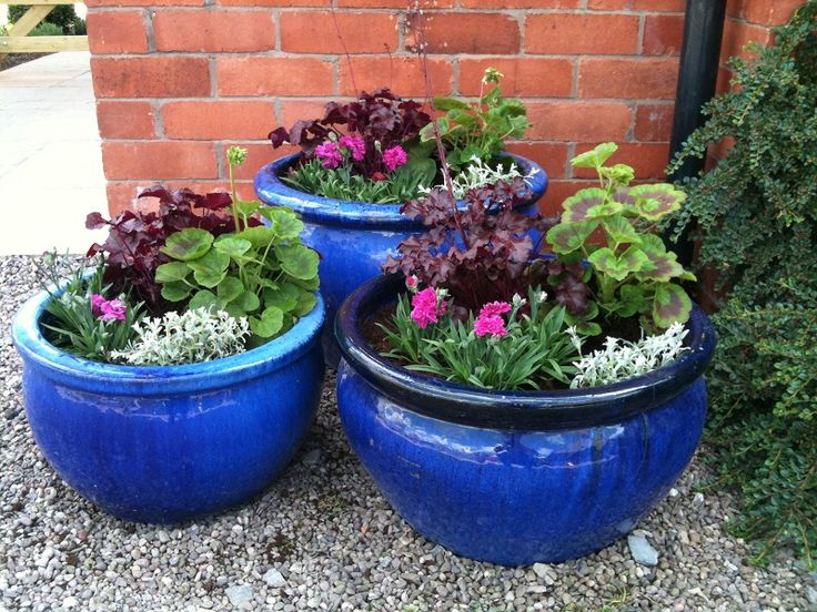 A 'finishing touch' service - planting up of containers