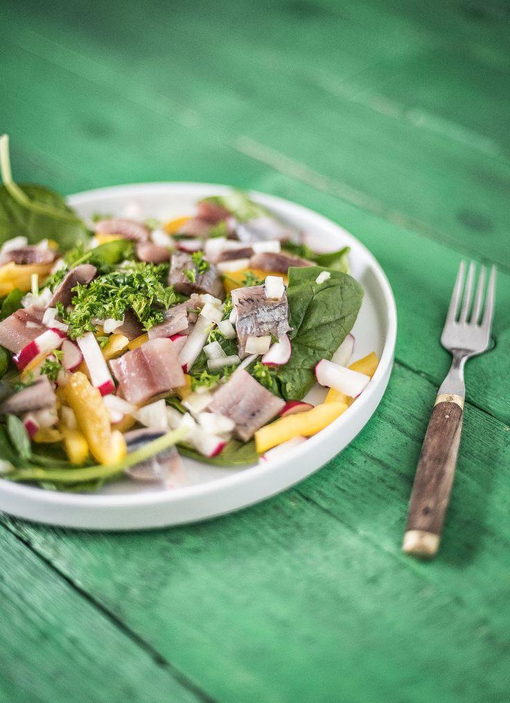 Haring smaakt heerlijk in een salade, dit is een haringsalade met paprika, radijsjes, spinazie, ui en verse peterselie. Een gezonde salade!