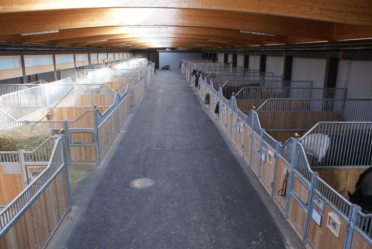 Pferde Einstellplätze-Michelfeld-Arena - Reitstall & Reithalle nahe Innsbruck - Völs in Kematen in Tirol- Reitstall Michelfeld Arena