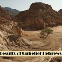 The Results Of Unbelief Hebrews 3 by Looking for that blessed hope, on SoundCloud