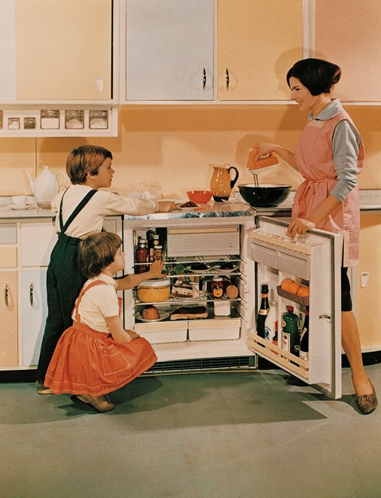 modern built in refrigerator from the 60 s moderner. Black Bedroom Furniture Sets. Home Design Ideas