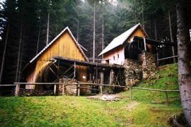 """Zlaté Hory - rekonstruované """"Zlatorudné mlýny"""" na řece Olešnici, v místě zvaném Údolí Ztracených štol, spojenou s těžbou zlata, připomínají dobu největší slávy města."""
