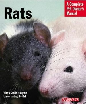 74 best rats love non fiction images on pinterest pet rats 74 best rats love non fiction images on pinterest pet rats fiction and computer mouse fandeluxe Image collections