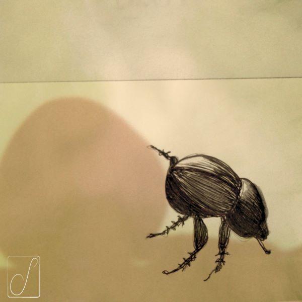 #unabellagiornata 290/365  #inktober2017 giorno 18   Scarabaeus semipunctatus - vedi vedi che lo Scarabeo Stercorario ci risolve il problema del surriscaldamento globale...#inktober  #inktoberaduntratto #passoasei #insetti  #sketchbook #shadow #beetle