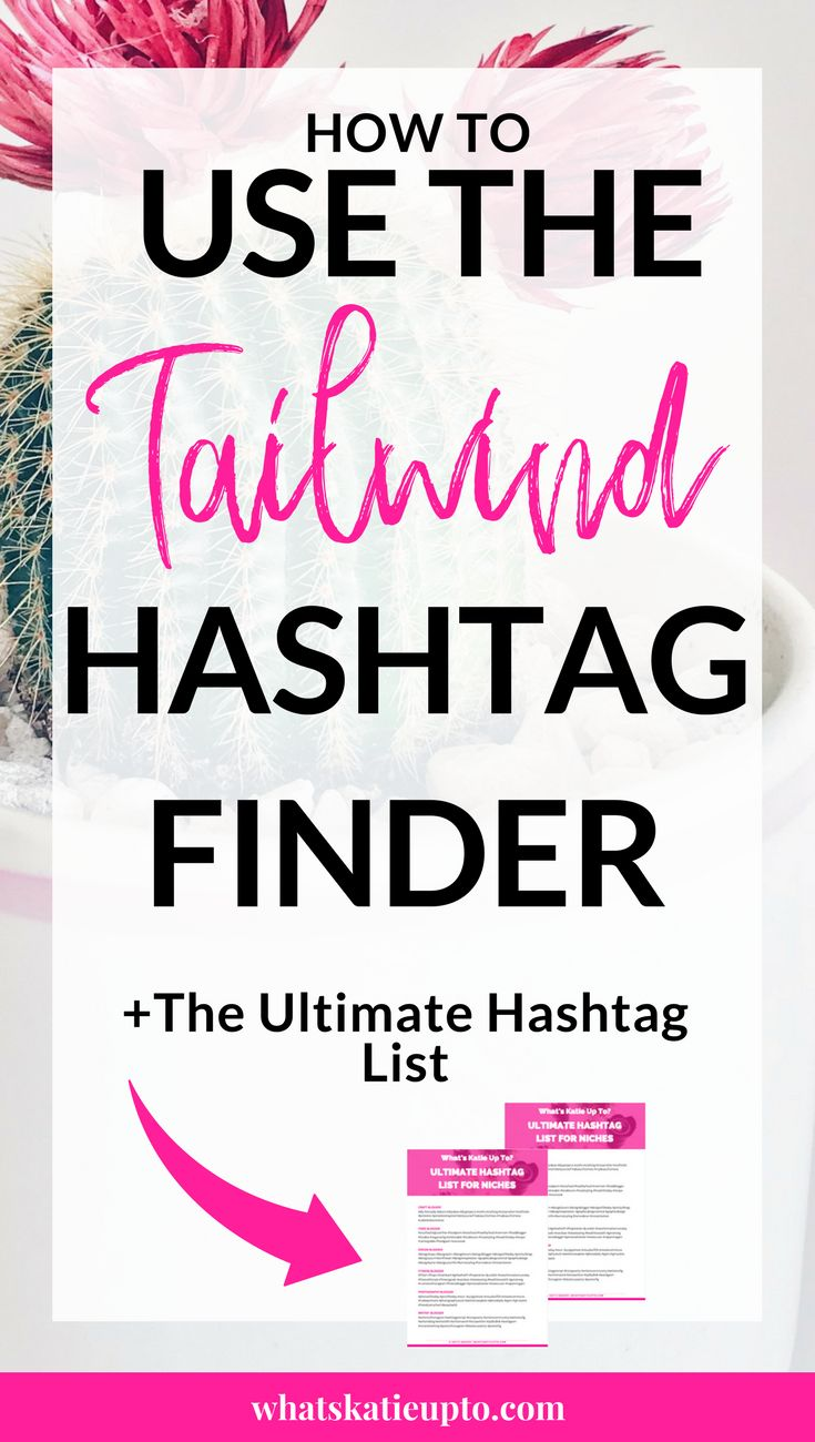 How to use the Tailwind Hashtag Finder