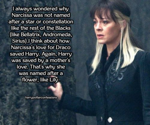 It's impossible JK Rowling just managed to think of all the connections that we keep finding. I mean... c'mon. It just doesn't end <3