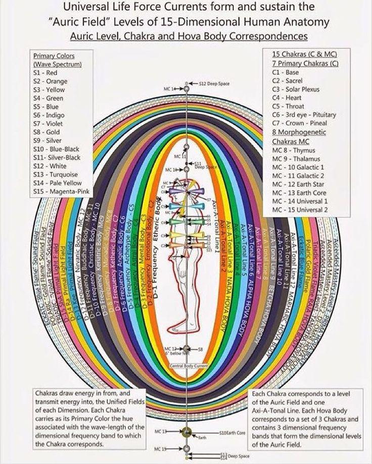 https://i.pinimg.com/736x/06/70/25/06702504ae76f59e76b661e3310035fe--chakra-system-the-rainbow.jpg